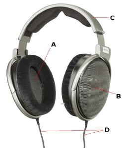 Sluchawki.info Budowa słuchawek